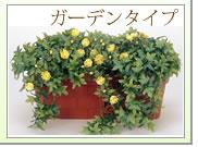 グリーン ガーデンタイプ